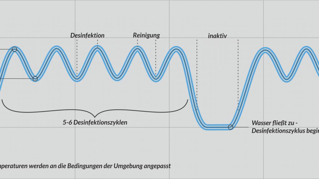 Wunderbar Wange Anatomie Diagramm Ideen - Menschliche Anatomie ...